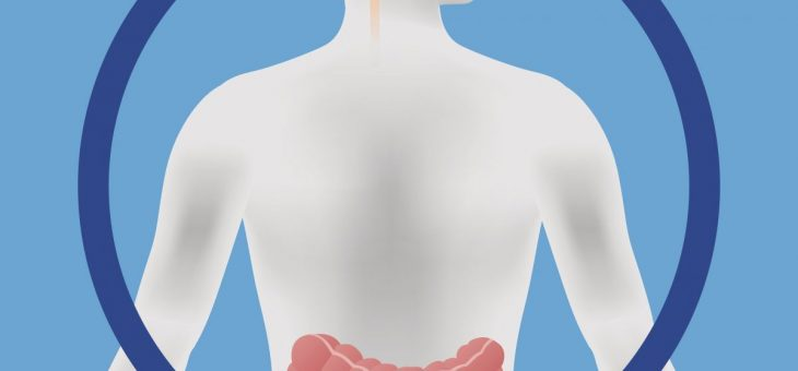 The Gut-Brain Connection – a biological superhighway